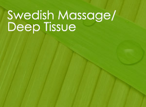 Swedish Massage / Deep Tissue